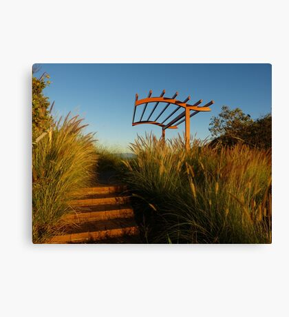 A grassy lookout Canvas Print