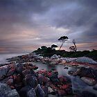 Sunset at Binalong Bay Tasmania by Angelika  Vogel