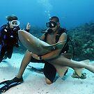 Shark Whisperer by Norbert Probst