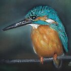 Lone Kingfisher by Linda Woodward