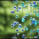 Zen Beads by jamjarphotos