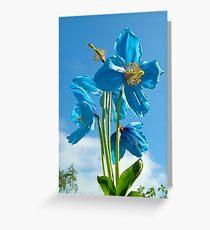 sky blue Greeting Card
