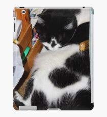 Quincy Sleeping iPad Case/Skin