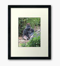 Gorilla Says Framed Print