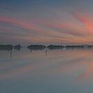 Foggy Bottom Sunset by bazcelt