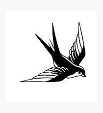 Sailor Jerry Swallow / Black & White Photographic Print
