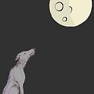 Full Moon, Empty Head by Kathleen Donnelly