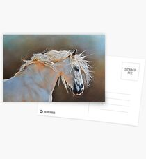 """Morning glow"" Postcards"