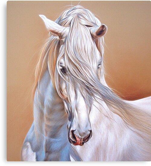 """Andalusian stallion"" - close-up by Elena Kolotusha"