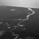 Towards the ocean von nurmut
