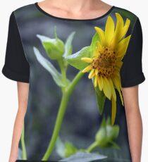 Beautiful sunny yellow flower macro. Women's Chiffon Top