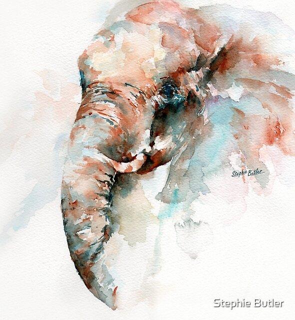 Wild in Samburu by Stephie Butler