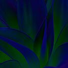 Succulent Abstract  in Blue and Green #215 by Larry Costales