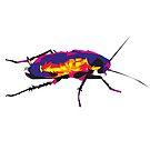 cockroach by 2piu2design
