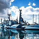 Sea Shepherd's Sam Simon in Syracuse by MarcW