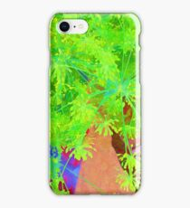 RainbowConfetti Farmers Market - Fresh Dill iPhone Case/Skin