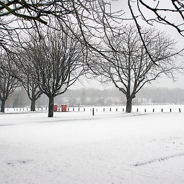 Snow in the park by LindaMarques