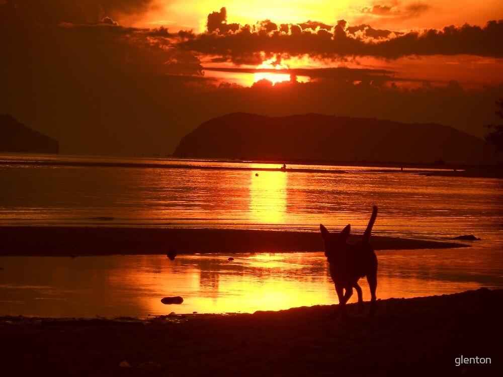 Beach Sunset by glenton