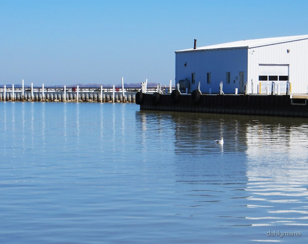 Sandusky bay reflections by shawna rowe redbubble for Sandusky bay fishing