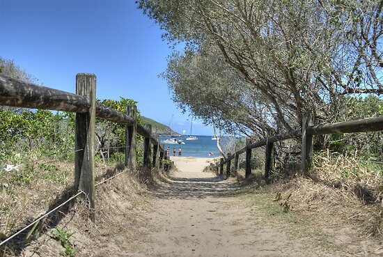 Pathway to Paradise, Coffs Harbour by Adrian Paul