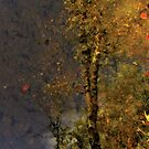 Autumn in a lake by JuliaPaa
