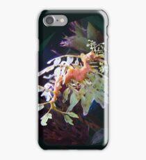 Leafy Sea Dragon iPhone Case/Skin