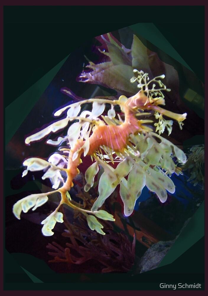 Leafy Sea Dragon by Ginny Schmidt