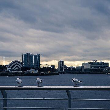 Three Cheeky Birdies by S-Shadowman