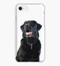 Black Labrador retriever iPhone Case/Skin