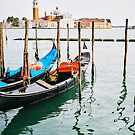 Venice by giuseppe dante  sapienza