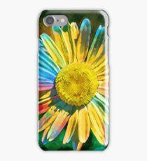 Rainbow Daisy Flower iPhone Case/Skin