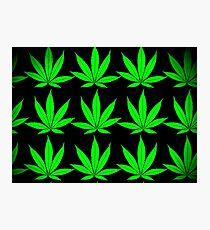 marihuana 2 Photographic Print