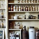 Mortar and Pestle and Bottles on Shelves by Susan Savad