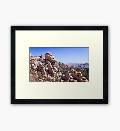 Who Does This Rock Look Like? Framed Print