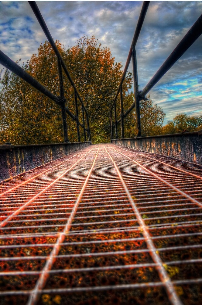Bridge Crossing  by Vicki Field