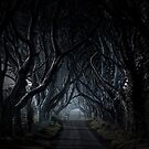 The Dark Hedges, Kingsroad, armoy by Wrayzo