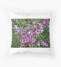 Phlox Throw Pillow
