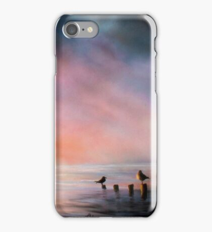 A Seabird's Paradise iPhone Case/Skin