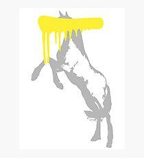 Censored Horse Photographic Print