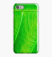Macro shot of green leaf, nature pattern background iPhone Case/Skin