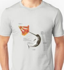 """The """"Science"""" of Narwhals T-Shirt"""