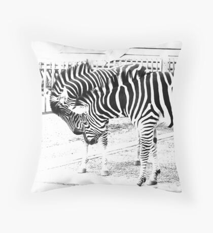 Zebras in high key Throw Pillow