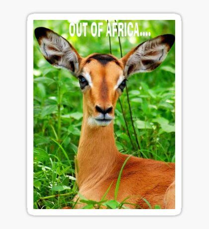 THE BABY IMPALA -  IMPALA - aepyceros melampus Sticker