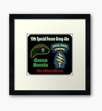 19th Special Forces Group (Abn) Framed Print