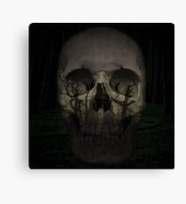 Desolate mind - Skull Collection Canvas Print