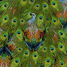 Nicobar-Peacock Fantasy by jenithea