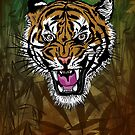 Tiger by andy551