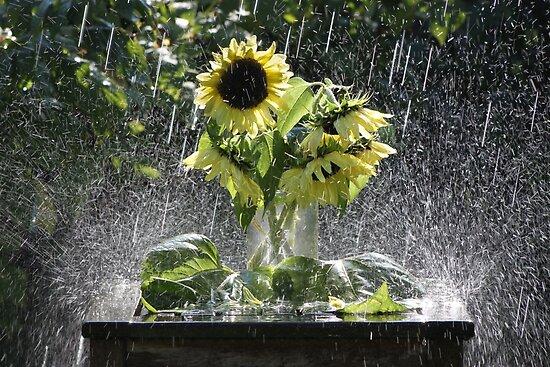 Shower Arrangement von kelvinLemur