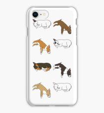 Lazy Bull Terrier - White iPhone Case/Skin