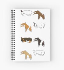 Lazy Bull Terrier - White Spiral Notebook